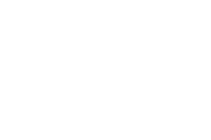 VoxxLife Independent Associate Logo Socks For Neuropathy
